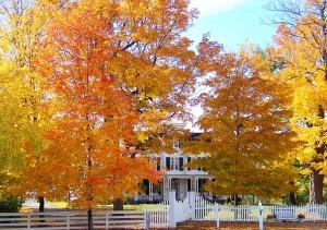 10-23-autumn